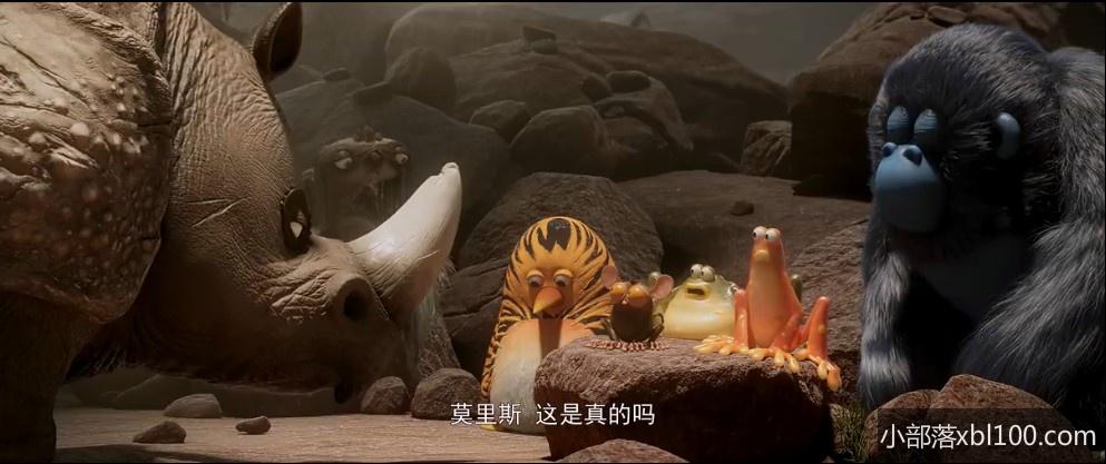 虎皮萌企鹅电影下载