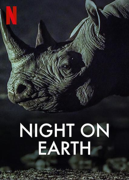 地球的夜晚纪录片