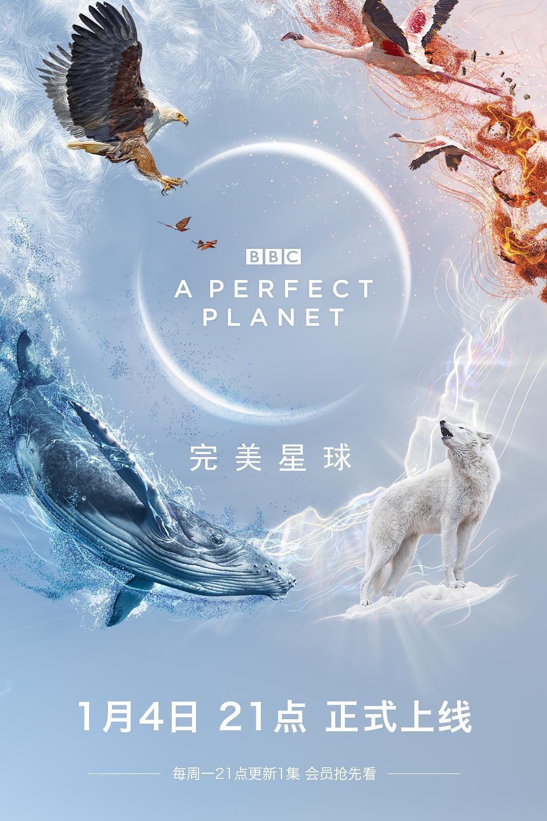 完美星球纪录片